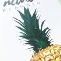 """Недельный планер """"Pineapple"""" mini"""