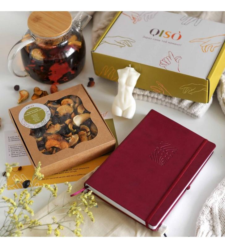 """Набор для планирования """"QISO"""" burgundy"""