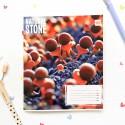 "Тетрадь #96 ""Stone"" brown"