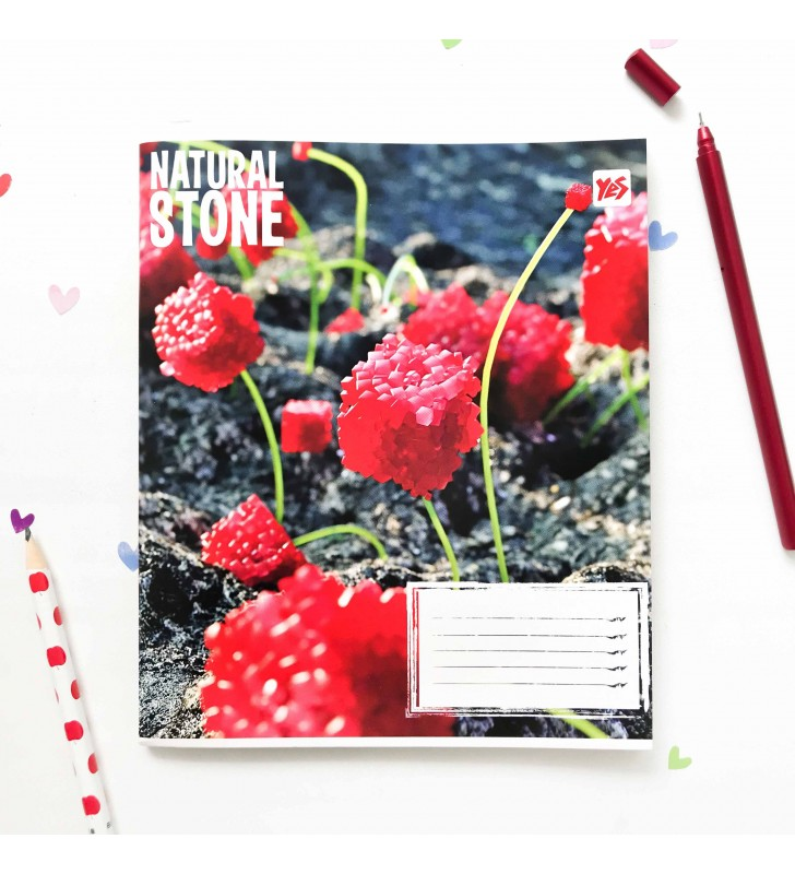 "Тетрадь #24 ""Stone"" red"