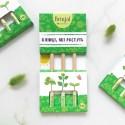 Набор карандашей с семенами растений